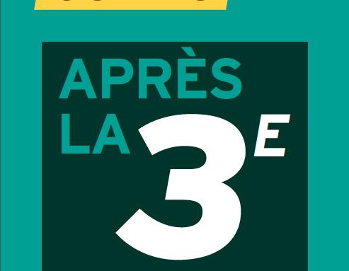 Orientation_3ème.png